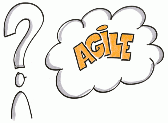 Grafik Agil Software entwickeln - Enabling Agile